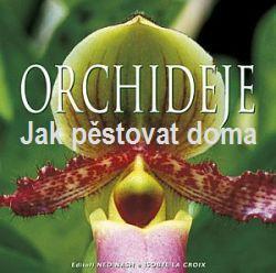 Orchideje: Jak pěstovat doma orchidej. Více ...